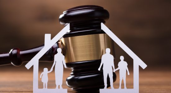 Procedimientos ante los Tribunales de Familia