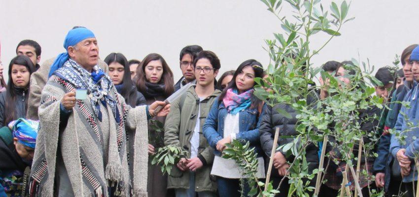 Investigador en Derecho presenta libro colectivo sobre pueblo mapuche y políticas públicas