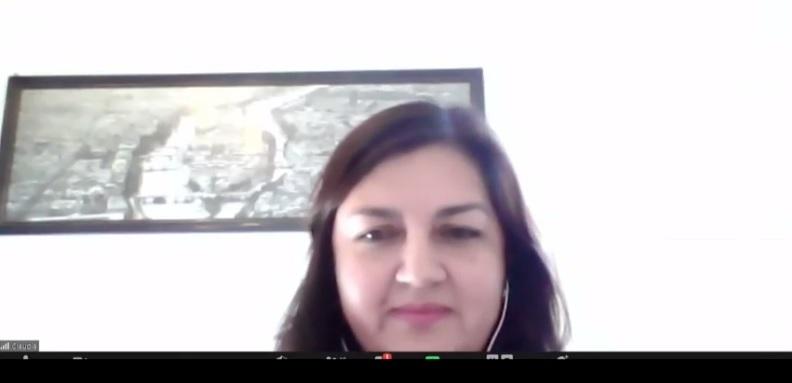 Directora de P. Educación Básica y Jefe División Educación General MINEDUC expusieron en webinar sobre transformación digital